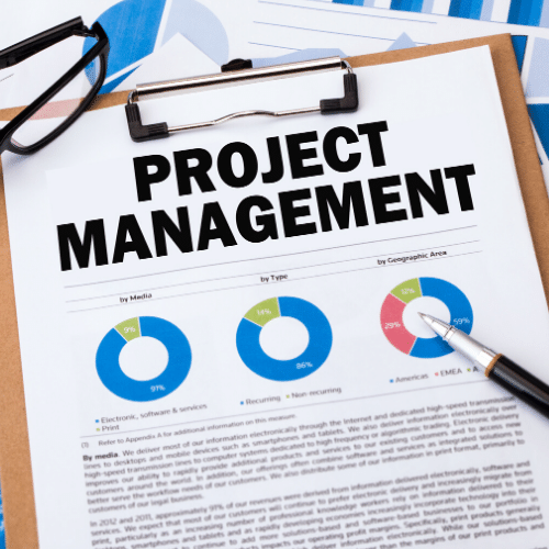 There are certain issues you must avoid when it comes to IT Project management.